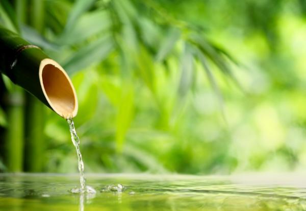 練習「不控制」人生更自在!李小龍:活著要像水一樣,保持柔軟流動反而更強大