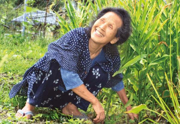 80歲沒老花眼、不駝背,每天只靠一菜一湯吃出健康!食養專家若杉友子50年不生病的飲食養生法
