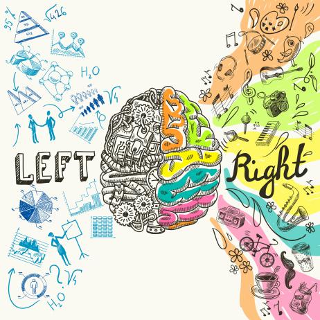 讓腦部情感系統區到100歲都不退化的鍛鍊法