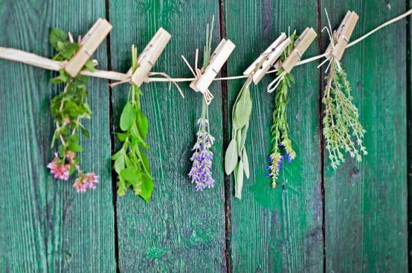 優雅不要忽略氣味!女性更年期後常見5種體味,如何預防?