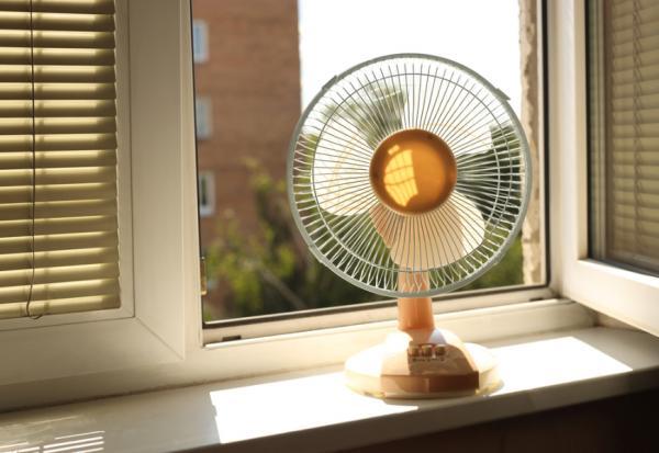 林黛羚專欄|美國CDC報告:居家「定向氣流」與換氣,可降低同住者感染風險,怎麼做?