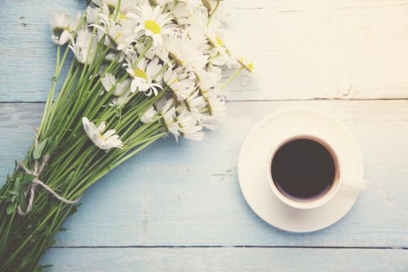 找到屬於自己的杯子,為自己沖一杯完美的咖啡